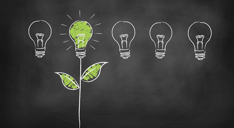 Nachhaltigkeit am Arbeitsplatz – Umweltbewusst arbeiten